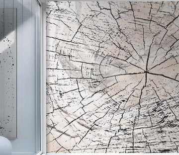 3D Spider Web Crack 2606 Wall Murals