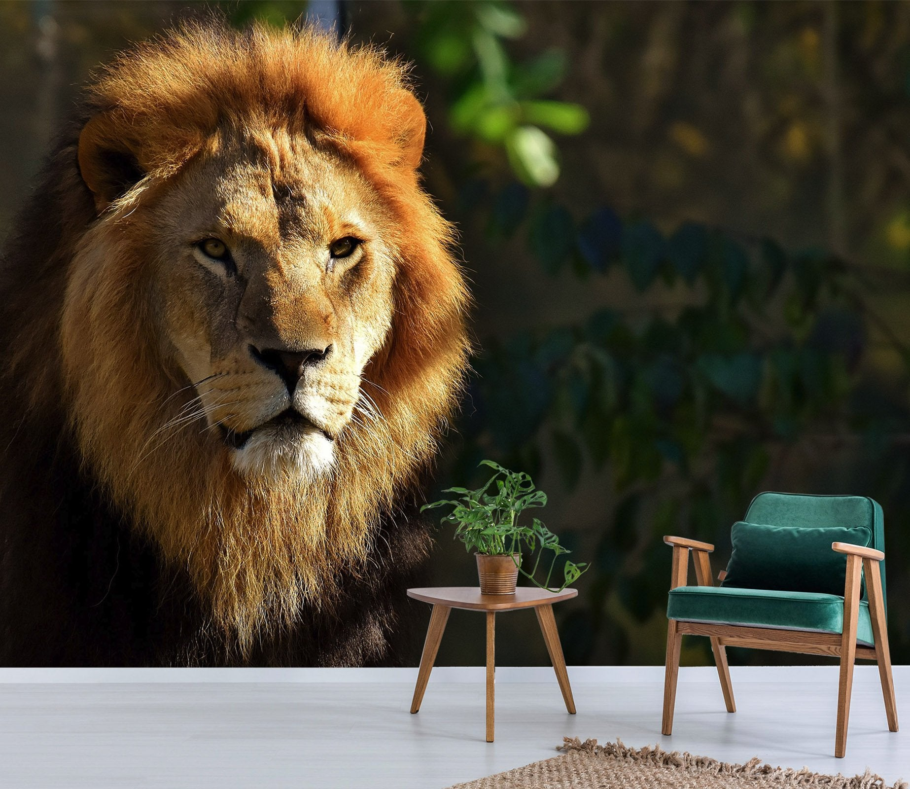 3D Lion In The Sun 212