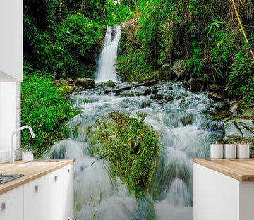 3D White Waterfall Forest 84 Wall Murals