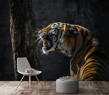3D Tiger Cub 244 Wallpaper AJ Wallpaper