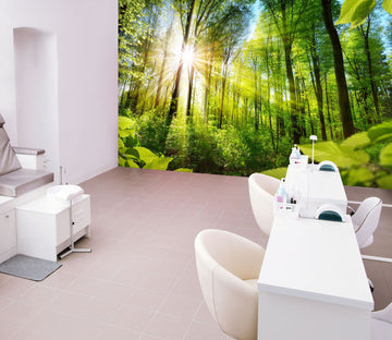 3D Green Forest 385 Wall Murals