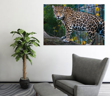 3D Forest Tiger 28 Animal Wall Stickers