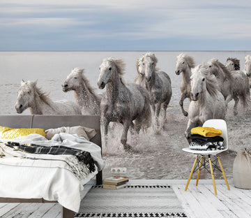 3D White Horse Gallop 1426 Marco Carmassi Wall Mural Wall Murals
