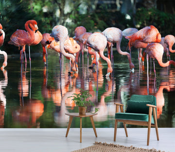 3D Flamingo Splashing 656