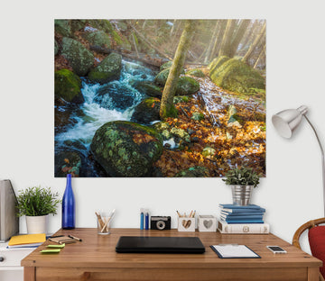 3D Forest Stream 108 Jerry LoFaro Wall Sticker
