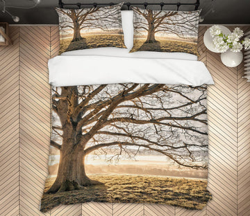 3D Sunny Dead Tree 1088 Assaf Frank Bedding Bed Pillowcases Quilt
