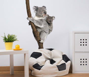 3D Koala Back Baby 189 Animals Wall Stickers Wallpaper AJ Wallpaper