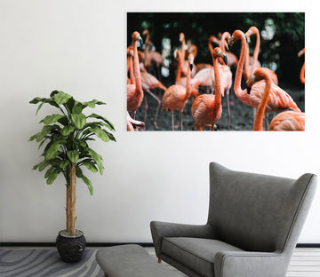 3D Playful Flamingo 59 Animal Wall Stickers