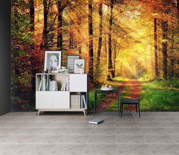 3D Autumn Forest 127 Wall Murals Wallpaper AJ Wallpaper 2