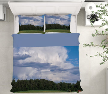 3D Summer Cloud 1025 Jerry LoFaro bedding Bed Pillowcases Quilt