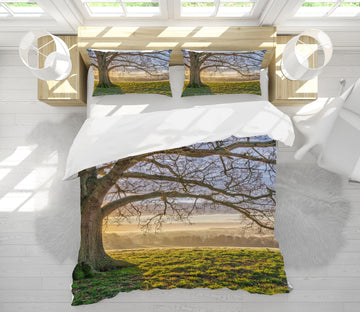 3D Tree Branch 1087 Assaf Frank Bedding Bed Pillowcases Quilt