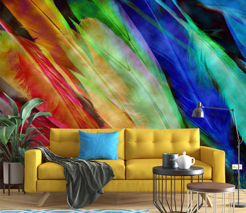 3D Colored Feathers 71073 Shandra Smith Wall Mural Wall Murals