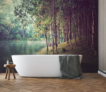 3D Forest Lake 006 Wall Murals