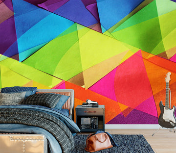 3D Colored Triangle 71088 Shandra Smith Wall Mural Wall Murals