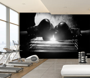3D Boxing Gloves 305 Wall Murals
