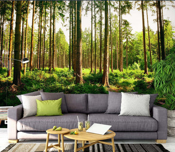 3D Green Forest 1508 Wall Murals