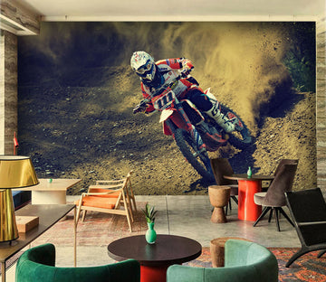 3D Bike Rider 927 Vehicle Wall Murals
