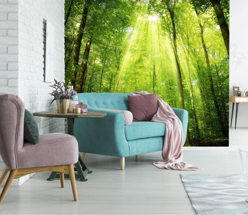 3D Green Forest 1507 Wall Murals