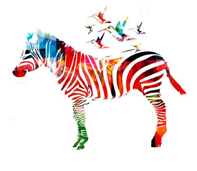 Colored Zebra Wallpaper AJ Wallpaper