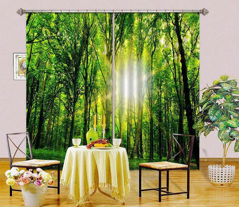 3D Forest Sunshine 2467 Curtains Drapes Wallpaper AJ Wallpaper