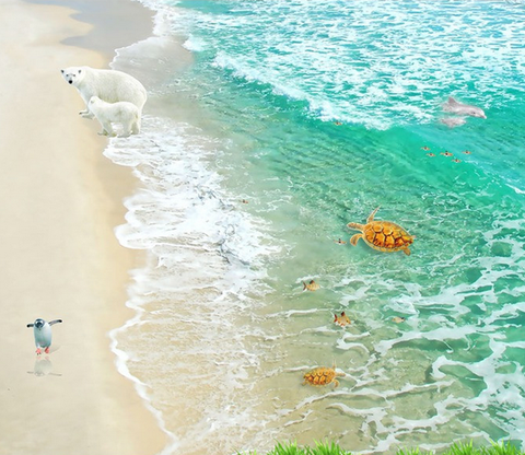 3D Beach Animals Floor Mural Wallpaper AJ Wallpaper 2