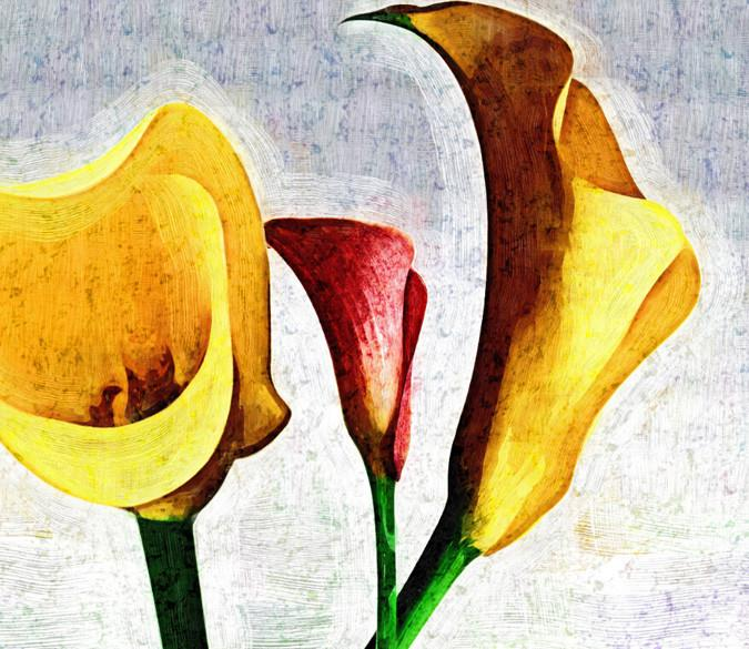 Yellow Flowers 9 Wallpaper AJ Wallpaper