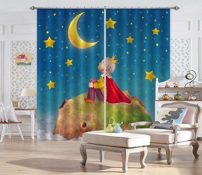 3D Little Prince 521 Curtains Drapes Wallpaper AJ Wallpaper