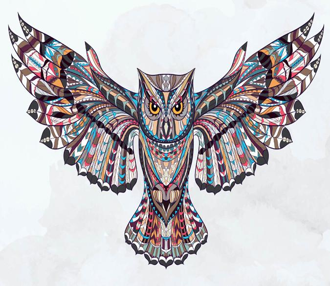 Flying Owl Wallpaper AJ Wallpaper