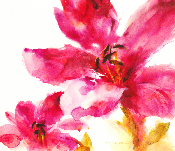 Watercolor Red Flowers Wallpaper AJ Wallpaper