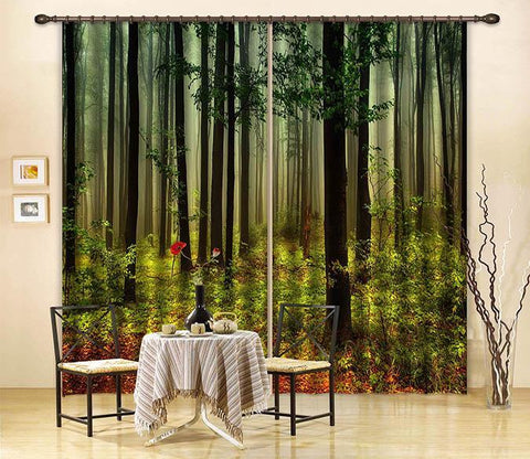 3D Misty Forest 2464 Curtains Drapes Wallpaper AJ Wallpaper