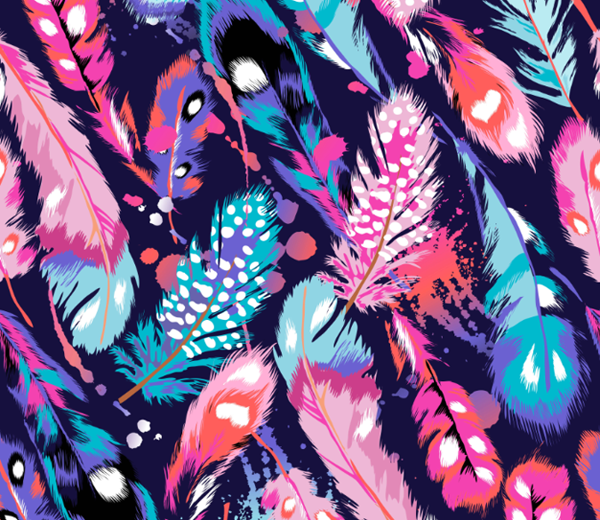 Colorful Feathers Wallpaper AJ Wallpaper