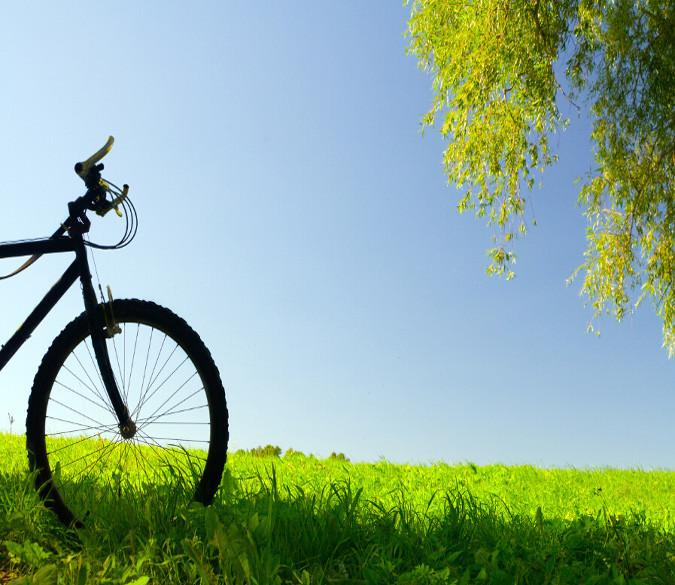 Grassland Bike Wallpaper AJ Wallpaper