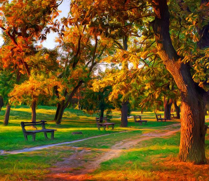 Beautiful Park Wallpaper AJ Wallpaper