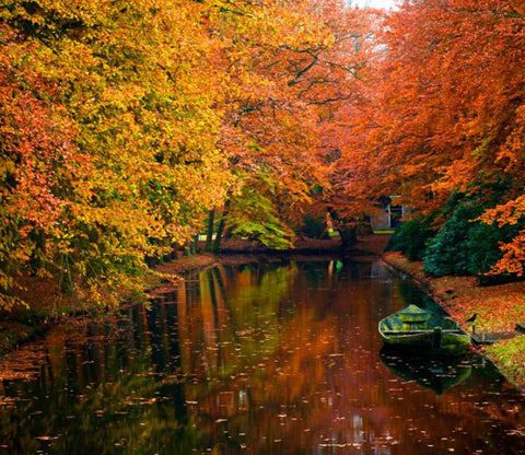 Autumn River Scenery Wallpaper AJ Wallpaper