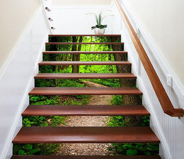 3D Green Forest Path 1025 Stair Risers Wallpaper AJ Wallpaper