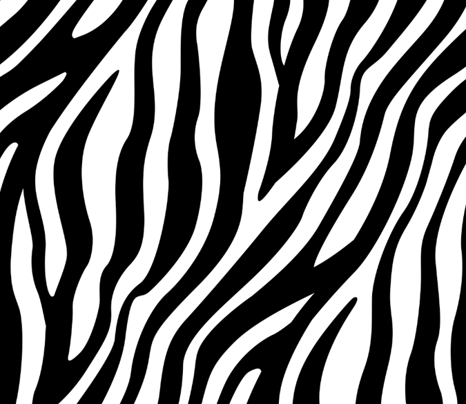 Zebra Stripes 1 Wallpaper AJ Wallpaper