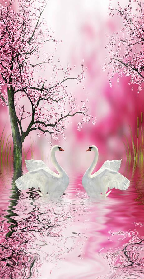 3D Beautiful Flowers And White Swans Wallpaper AJ Wallpaper 1