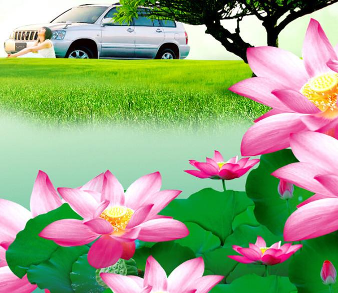Fresh Lotus And Grass Wallpaper AJ Wallpaper