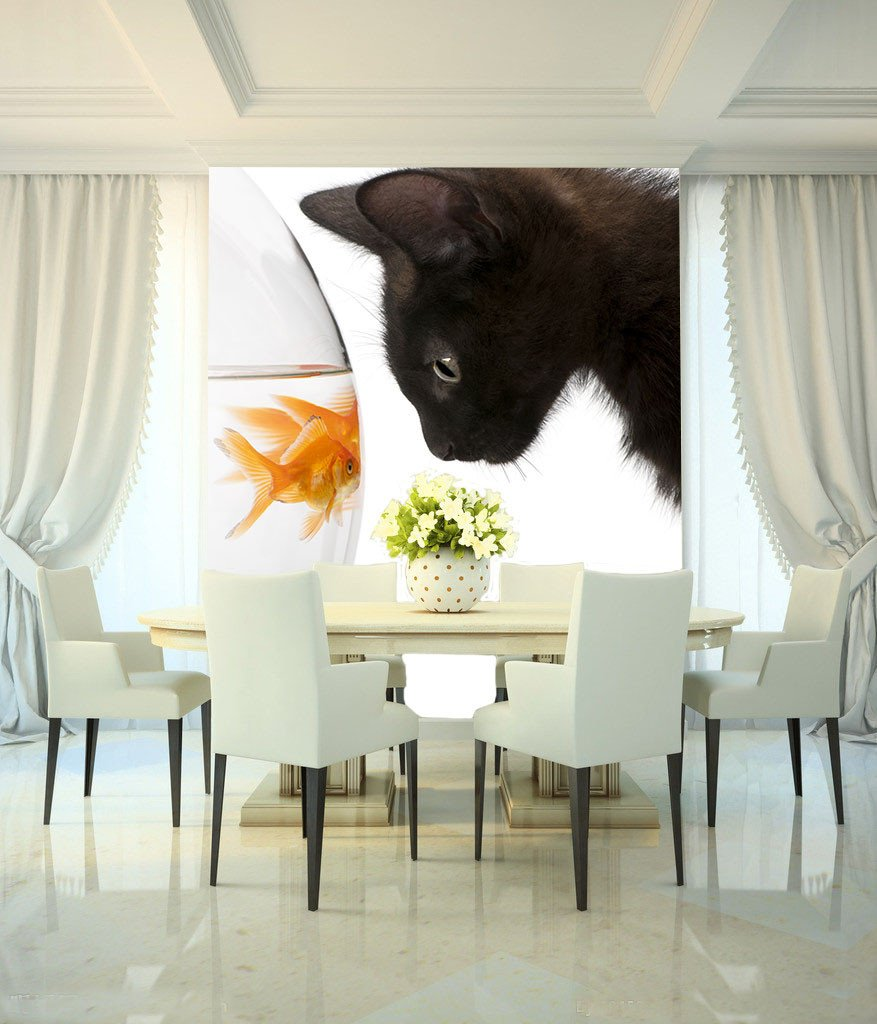 Cat And Fishes Wallpaper AJ Wallpaper