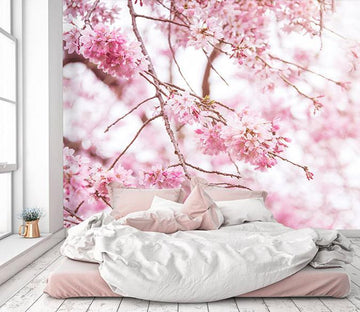 3D Cherry Blossoms 028 Wallpaper AJ Wallpaper