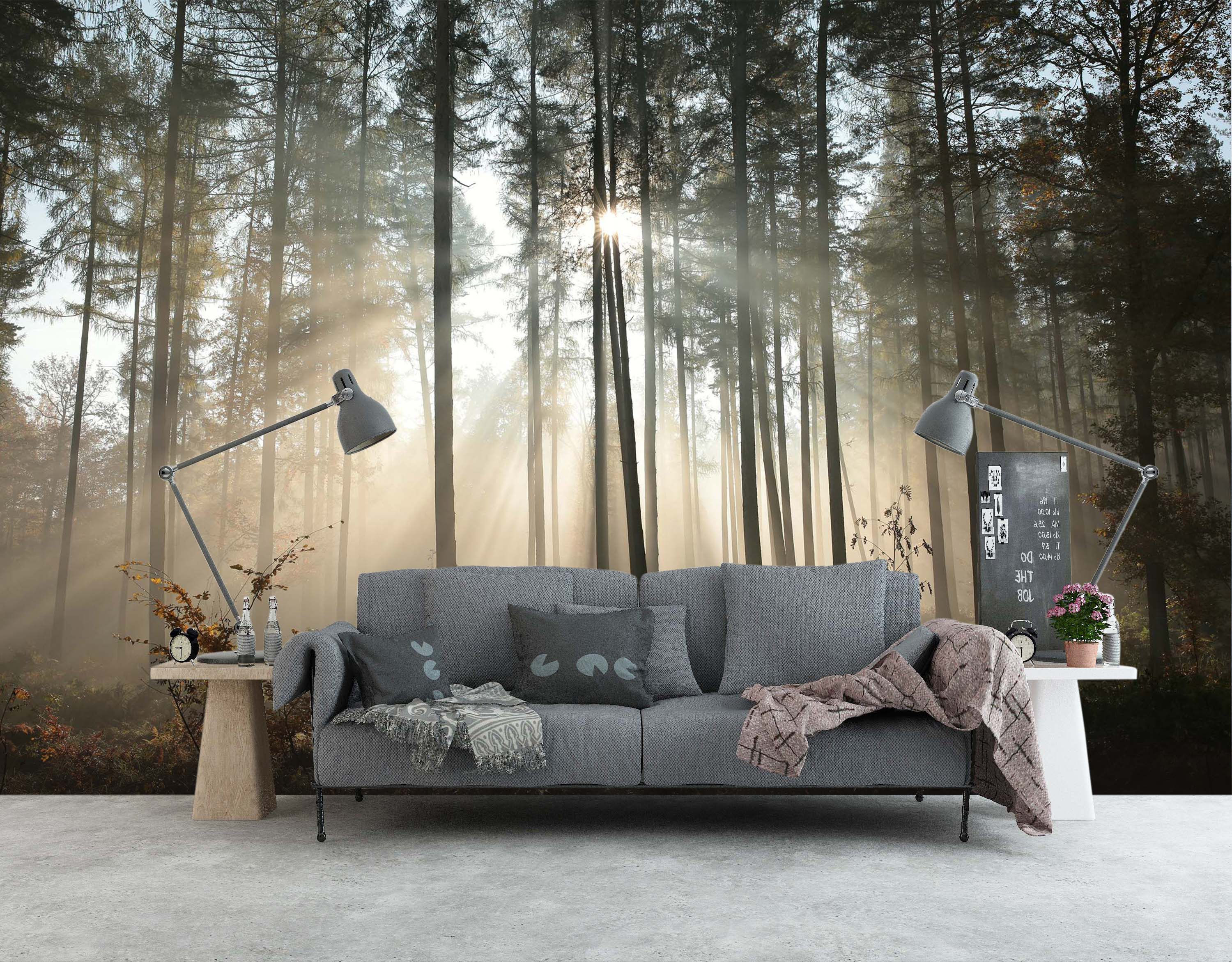 3D Woods Sunlight 1458 Wall Murals