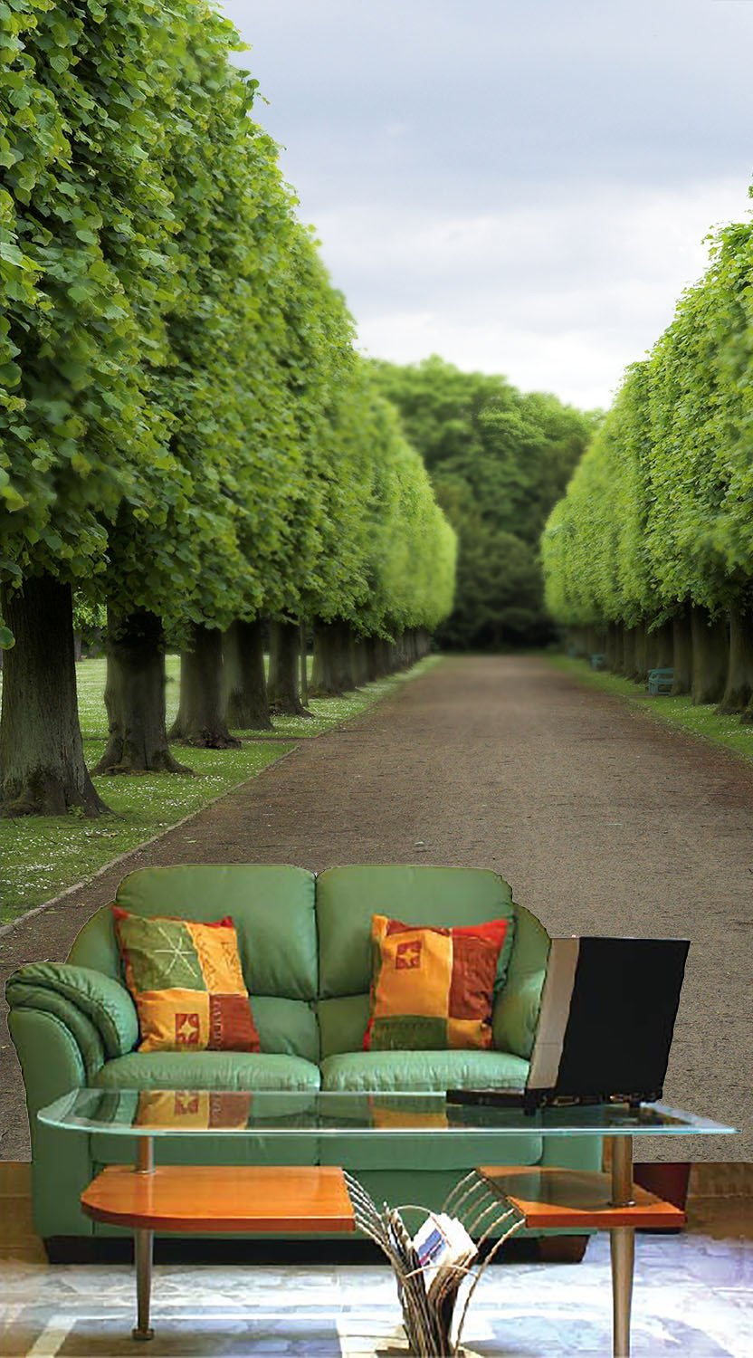 Manicured Trees Wallpaper AJ Wallpaper
