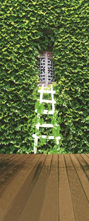 3D Ivy window white staircase door mural Wallpaper AJ Wallpaper