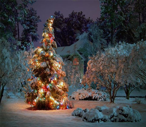 3D Beautiful Christmas Tree 622