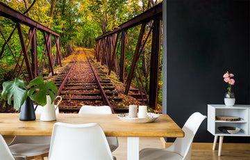 3D Forest Bridge 412 Vehicle Wall Murals