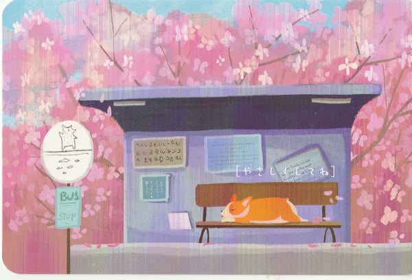 Diary of a Corgi Dog - CD30 - Sakura Season