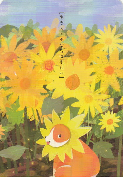 Diary of a Corgi Dog - CD07 - Sunflower Fields