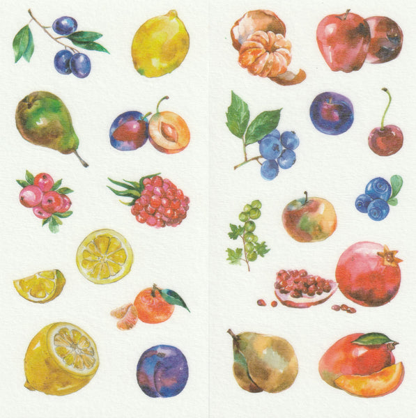 [FREE with US$10 purchase!] Food Series - Fruits Sticker Set C
