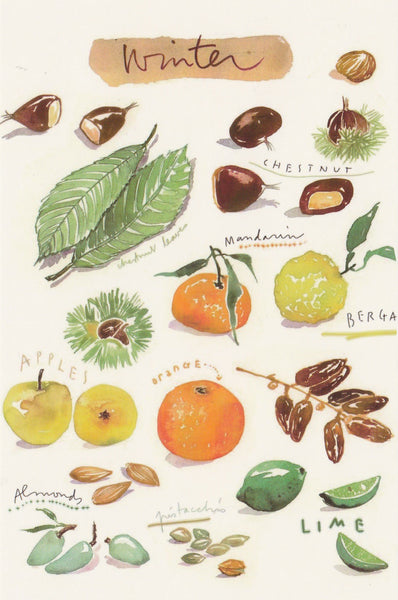 Food Recipe Postcard - Seasonal Winter Ingredients