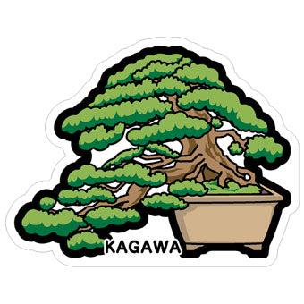 Japan Gotochi (Kagawa) Postcard - Pine Bonsai Japanese Plant